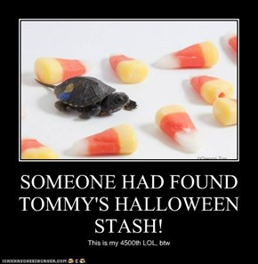 SOMEONE HAD FOUND TOMMY'S HALLOWEEN STASH!