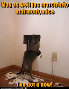 May as well jus march into mai mouf, mice  I've got u now!