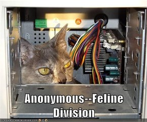 Anonymous--Feline Division