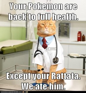 Your Pokemon are back to full health.  Except your Rattata. We ate him.