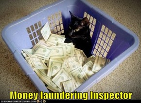 Money laundering Inspector