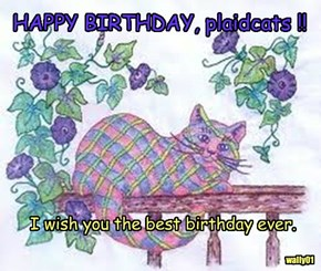 HAPPY BIRTHDAY, plaidcats !!