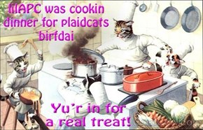 Hope yu hav a wonderful birfdai, plaidcats. (oh I'll clean up later)