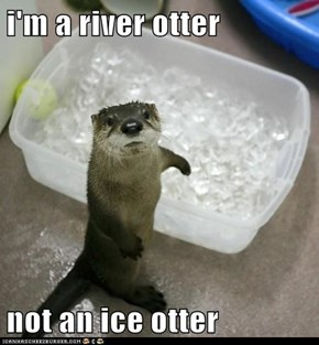 You Otter Know the Difference