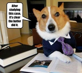 After studying this case, it's clear the butler did it.