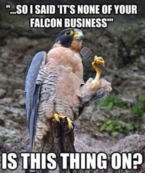 Comedian Falcon