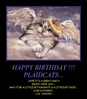 HAPPY BIRTHDAY !!! PLAIDCATS...