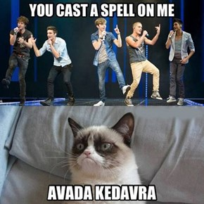one direction, grumpy cat, avada kedavra