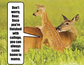 Don't worry, Deer. Once you're finished with college, you can always come home to mama.