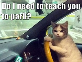 Do I need to teach you to park?