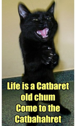 Life is a Catbaret old chum Come to the  Catbahahret