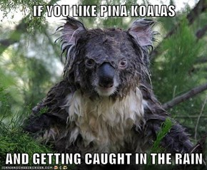 IF YOU LIKE PINA KOALAS  AND GETTING CAUGHT IN THE RAIN