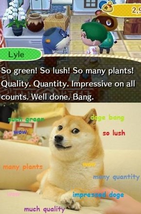 Such Animal Crossing