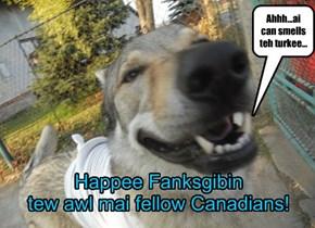 Happee Fankgibin!