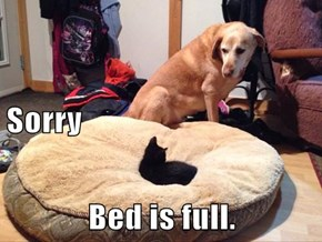 Sorry Bed is full.