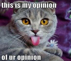 That's One Opinionated Cat