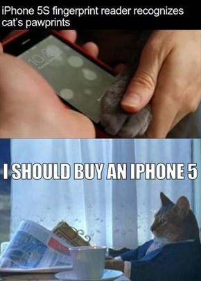 Apple is Cat-Friendly