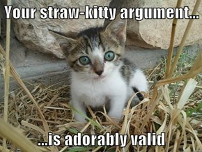Your straw-kitty argument...  ...is adorably valid