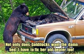 Not  only  does  Goldilocks  want  the  damn bed,  I  have  to fix  her  old  beater  too!