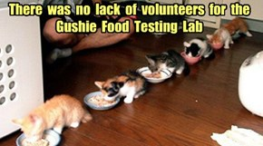There  was  no  lack  of  volunteers  for  the  Gushie  Food  Testing  Lab