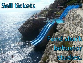 Sell tickets  Fund shark                                              behavior                                                   studies.