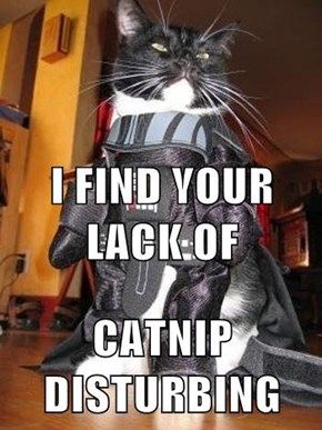 I FIND YOUR LACK OF CATNIP DISTURBING