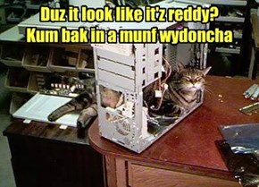 Duz it look like it'z reddy?  Kum bak in a munf wydoncha
