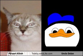 Pervert Kitteh Totally Looks Like Uncle Dolan