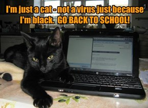 I'm just a cat - not a virus just because I'm black.  GO BACK TO SCHOOL!
