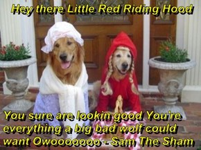 Hey there Little Red Riding Hood  You sure are lookin good You're everything a big bad wolf could want Owooooooo - Sam The Sham