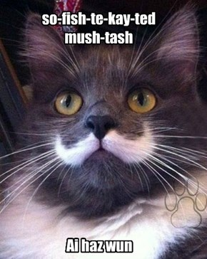 so-fish-te-kay-ted  mush-tash