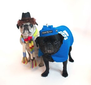 Doctor Pug and the Pugdis