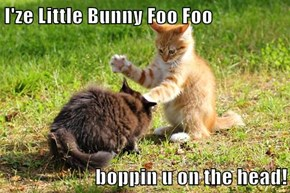 I'ze Little Bunny Foo Foo  boppin u on the head!