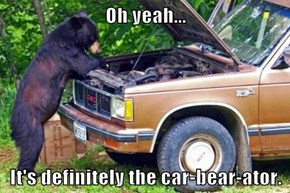 Oh yeah...  It's definitely the car-bear-ator.