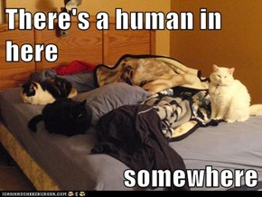 There's a human in here  somewhere