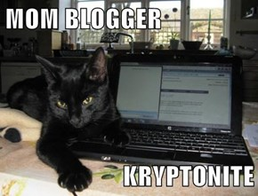 MOM BLOGGER  KRYPTONITE