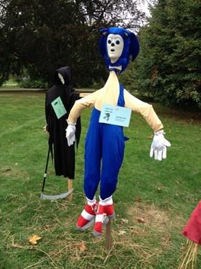 Sonic the Scarecrow