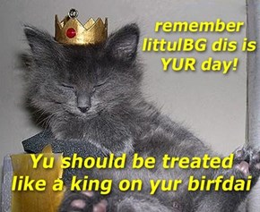 Have a Happy Birfdai, littulBG!