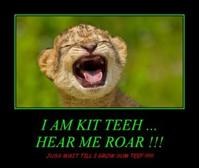 I AM KIT TEEH ... HEAR ME ROAR !!!