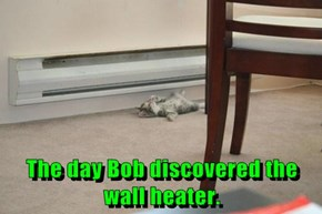 The day Bob discovered the wall heater.