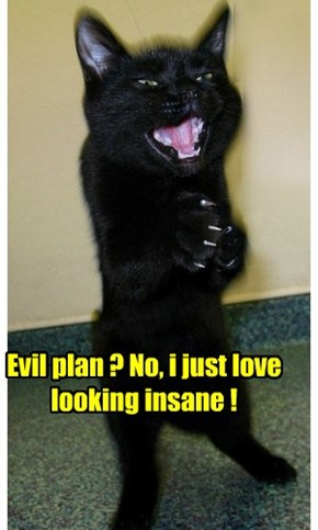 Evil plan ? No, i just love looking insane !