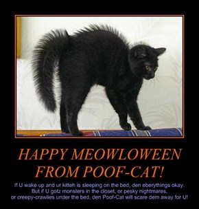 HAPPY MEOWLOWEEN FROM POOF-CAT!