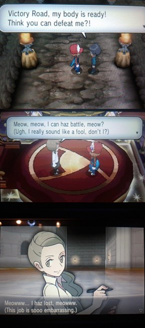Those Darn Translators