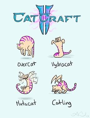 Catcraft