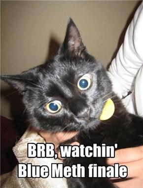 BRB, watchin'  Blue Meth finale