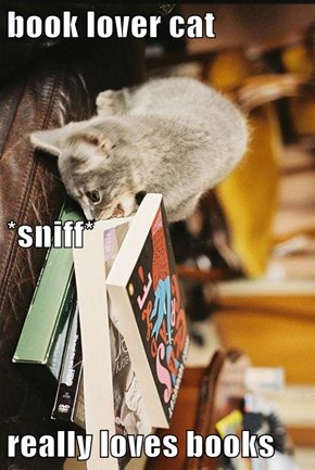 book lover cat *sniff* really loves books
