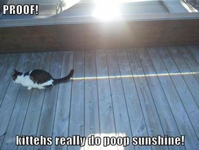 PROOF!   kittehs really do poop sunshine!
