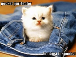 Make Your Pockets Purrrfectly Cute