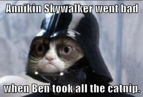 Annikin Skywalker went bad  when Ben took all the catnip.