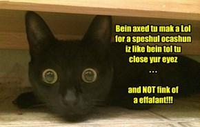 Bein axed tu mak a Lol  for a speshul ocashun  iz like bein tol tu  close yur eyez  . . .  and NOT fink of  a effafant!!!